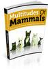 Thumbnail Multitudes Of Mammals