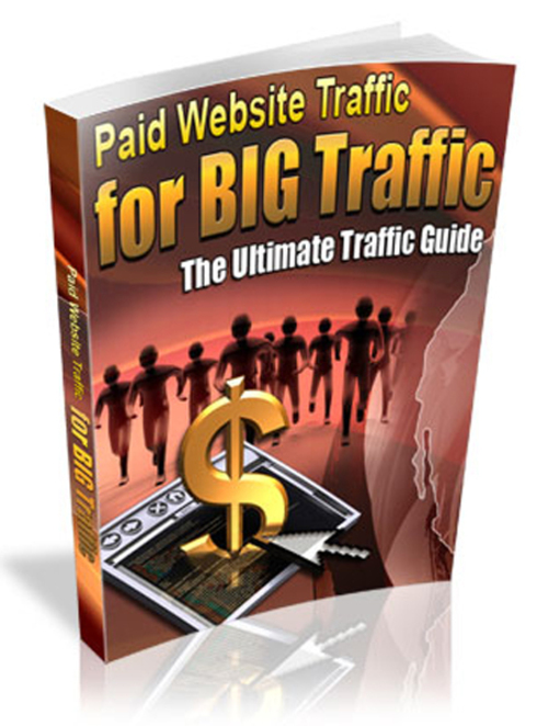 Product picture Paid Website Traffic For Big Traffic